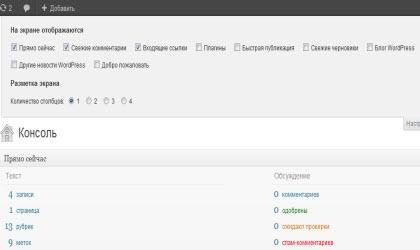 административная панель WP_настройки экрана